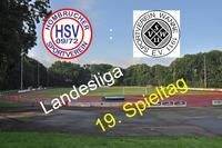 Landesliga: 19. Spieltag